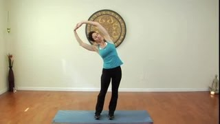 Download Stretches for the Latissimus Dorsi : Stretching & Exercising Video
