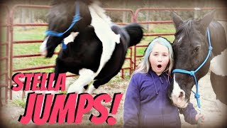 Download OMG SHE JUMPED THE FENCE! HER FIRST JUMP! Day 293 (10/22/18) Video