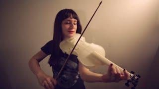 Download 3D Printed Acoustic Violin - Hovalin V1.0 Video