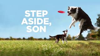 Download Hill's Youthful Vitality for healthy older pets Video