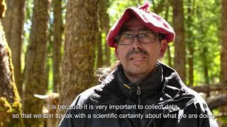Download Supervisión de profesionales en Parque Karunkinka, sitio piloto del proyecto GEF Castor Video