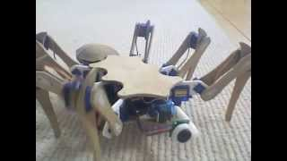 Download Hexapod Robot - Insect Robot - Spider Robot Video