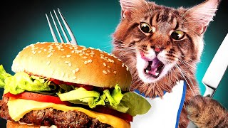 Download HUNGRY CAT Video