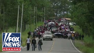 Download Another migrant caravan headed towards US border Video