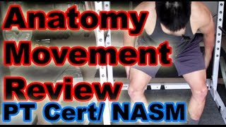 Download Anatomy Movement Review for PT Certifications and NASM Video