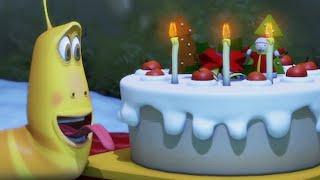 Download LARVA | Le gâteau d'anniversaire | Dessin animé | Dessins animés pour enfants | LARVA Officiel HD Video