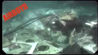 Download TWA Flight 800 Salvage Video