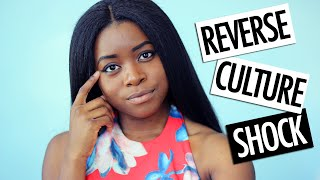 Download REVERSE CULTURE SHOCK: FROM ITALY BACK TO USA Video