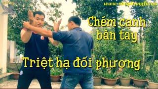 Download Võ Tự Vệ #21 | Học võ tự vệ hiệu quả | Hoc vo, Đòn chém | Học võ Kung Fu, Tu tap vo tai nha Video
