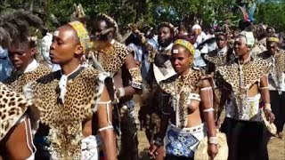 Download The Road to Judea - The Shembe in Zululand Video