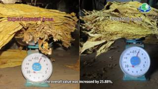 Download Green Organic Biotech Company Introduction Video