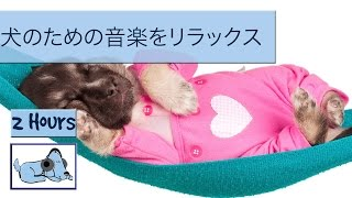 Download 抗不安犬の音楽 - 音楽と治療法分離不安の犬! Video