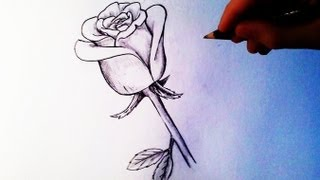 Download How to Draw a Rose - Easy tutorial Video