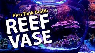 Download REEF VASE Begins!! Rico's Nano Tank Challenge 2018! Video