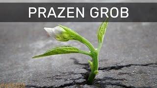 Download #deliJezusa Post 2017: Prazen grob Video