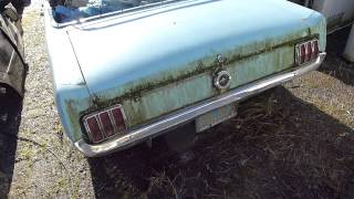 Download Junkyard Find: Super Secret Salvage Stash, I think I found a 1964-1/2 K code Mustang Convertible ! Video