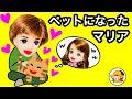 Download マリア猫になってハルトのペットになる❤︎ 妖精の魔法★ Video