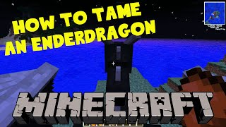 Download TAMING THE ENDERDRAGON IN MINECRAFT (no mods) Video