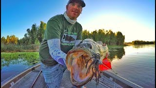 Download Buzzbaits Tricks You Didn't Even Know To Try! Video