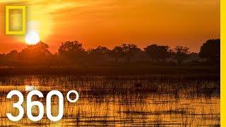 Download The Okavango After Dark in 360 - Ep. 3 | The Okavango Experience Video