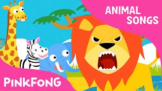 Download Hakuna matata | Animal Songs | PINKFONG Songs for Children Video