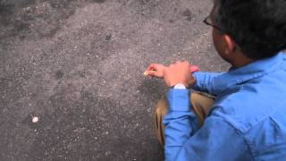 Download Street Fighting Math | MITx on edX | About Page Video