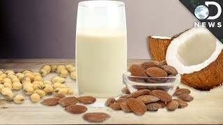 Download Soy, Almond or Coconut: Which Non-Dairy Milk Is Best? Video