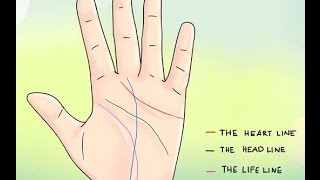 Money / Wealth Lines (Palm Reading) In English,PALMISTRY