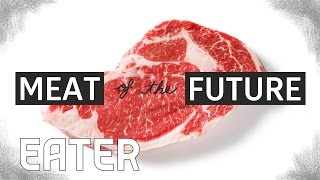 Download The Meat of the Future: How Lab-Grown Meat Is Made Video