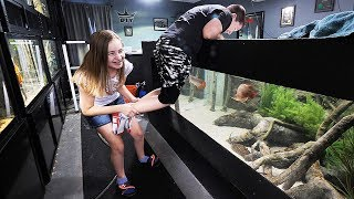 Download My KIDS react to my AQUARIUMS! | The King of DIY Video