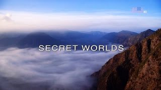 Download Wildest Islands of Indonesia - Series 1 - Episode 4 of 5: Secret Worlds Video