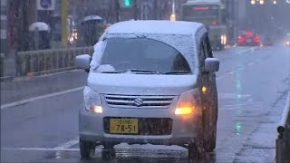 Download Tokyo Hit By First November Snow In 54 Years Video