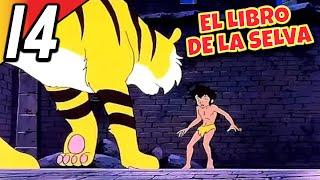 Download EL LIBRO DE LA SELVA   Episódio 14 Completo   Español   Full HD   1080p Video