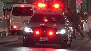 Download 4K 5連発!!緊急走行!!警視庁パトカー サイレン高らかに都心を爆走!!クラウン!エスティマ!レガシィ!Police Cars Emergency Vehicle Japan Video