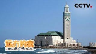 Download 《远方的家》一带一路(492) 摩洛哥 白色之城——卡萨布兰卡 20190520 | CCTV中文国际 Video