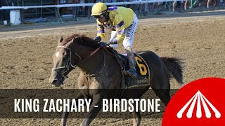 Download King Zachary - 2019 - The Birdstone Stakes Video
