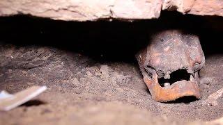 Download Подземелье Гостиного двора в Харькове: останки и старинные находки Video