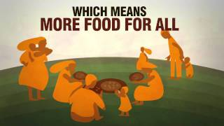 Download Closing the gap between men and women in agriculture Video