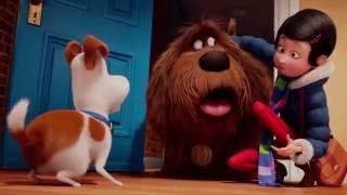 Download Pets - A Vida Secreta dos Bichos - Trailer Oficial 3 Dublado Video