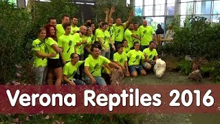 Download Reptil TV - Folge 98 - Verona Reptiles Börse Italien 2016 Video