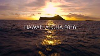 Download Hawai'i Aloha   Song Across Hawai'i   Playing For Change Collaboration Video