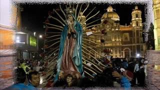 Download La Guadalupana - Banda Cuisillos.mp4 Video