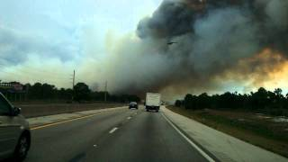Download Wild fires south Florida, fires burning, forest fire Video