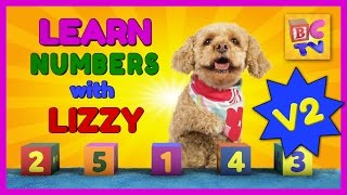 Download Learn Numbers with Lizzy the Dog | v2 | Learn to Count to 10 for Kids Video