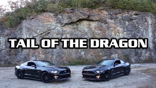 Download Tail of the Dragon - Mustangs Can Turn! Video