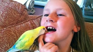 Download Most CREATIVE ways to PULL TEETH! - Funny Kids FAILS Compilation Video