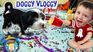 Download IT'S OREO🎵FUNnel Vision Doggy Vloggy! Who's Harder to Handle, Puppy or Baby? (After Christmas Vlog) Video