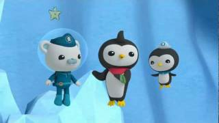 Download Octonauts Christmas Special - s1e51 - The Great Penguin Race Video
