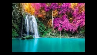 Download 🔴 Study Music 24/7: Concentration Music, Relaxing Music, Sleep Music, Meditation Music Video