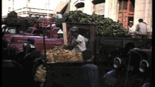 Download FOOD IN CUBA BEFORE AND AFTER FIDEL CASTRO'S COMMUNIST REVOLUTION Video